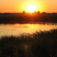 Краснозерские озера, Краснозерское