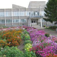 Библиотека, Куйбышев