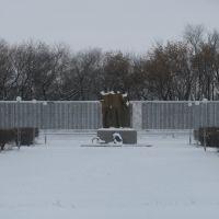 Памятник Героям фронта и тыла, Купино