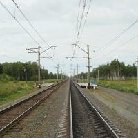 Транссиб, о.п. 3149 км. Вид на запад, Михайловский