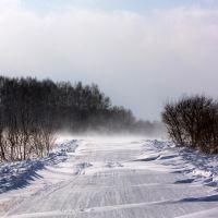 Буран в полях у Верх-Аллака, Михайловский