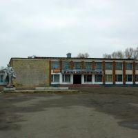 Панкрушиха, Дом Культуры, Михайловский