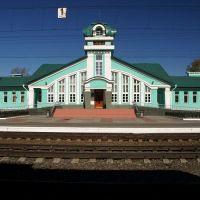 Moshkovo train station, Мошково