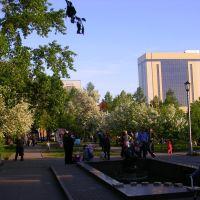 Russia, Novosibirsk,Spring, Pervomaisky Skver /Россия, Новосибирск, Весна, Первомайский сквер, Новосибирск