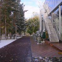 [Russia, Novosibirsk, Autum, First Snow, Pervomaisky Skver /Россия, Новосибирск, Осень, Первый Снег, Первомайский сквер], Новосибирск