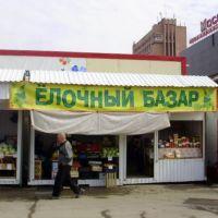 Эх, елки-палки...огурки-помидорки..., Новосибирск
