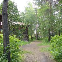 Детская библиотека, Ордынское