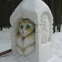 Снежный кот, Ордынское