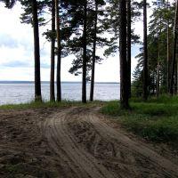 Вдоль берега (Обское море, Ордынское, Новосибирская область), Ордынское