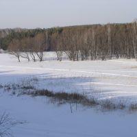 р. Орда, левый берег зимой (Ордынское, Новосибирская область), Ордынское