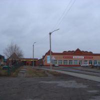 пгт.Сузун. ул.Ленина, Сузун