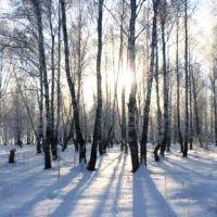 Winter panorama, Тогучин