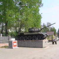 Памятник, Черепаново