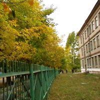 Наша школа, Береговой