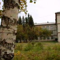Вид на школу со двора, Береговой
