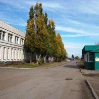 ул. 2 Осенняя, за ДК, Береговой
