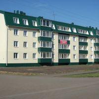 Новый жилой дом по ул. 50 лет ВЛКСМ, Большеречье