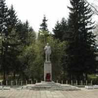 Большереческий Ленин, Большеречье