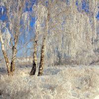 Зима, Калачинск