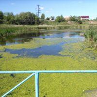 чистый пруд, Калачинск
