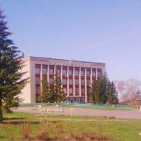 Советы правят Калачом!, Калачинск