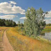 Дорога, Калачинск