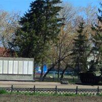 Крутинские войска 8 мая, Крутинка