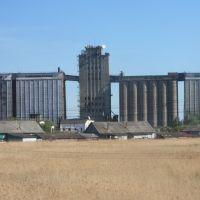 Элеватор, Называевск
