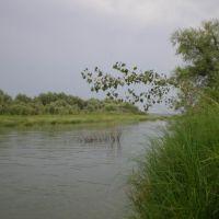 Иртыш, Нововаршавка