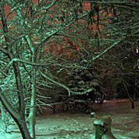 Полночь после снегопада = Midnight after a snowfall, Омск