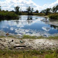 Заброшенный пруд, Павлоградка
