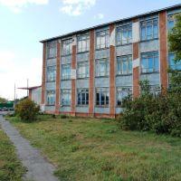 школа №2, Павлоградка