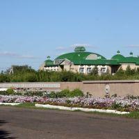 Памятник и библиотека, Полтавка