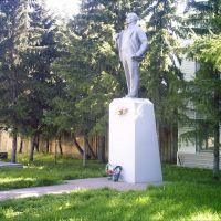 Lenin, Саргатское