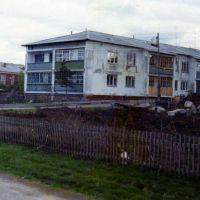 ул.Ворошилова 1 с.Седельниково, Седельниково