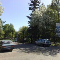 парк КиО, Тара