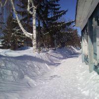 Снежный март 2013 г., Тара