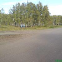 Берегите Леса России, Тюкалинск