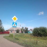пешеходный переход, Тюкалинск