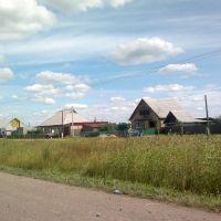 добротные дома, рядом с дорогой, Тюкалинск
