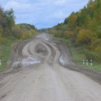 Дорога из Усть-Ишима