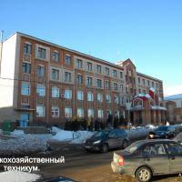 Сельскохозяйственный техникум., Бугуруслан