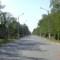 Улица Ленина, Гай