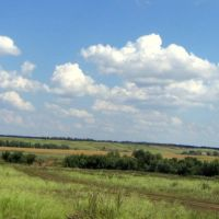 steppe, Грачевка