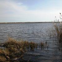 Озеро, Домбаровский