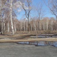Парк весной, Медногорск