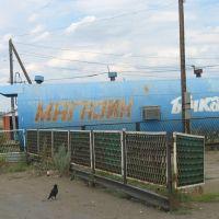 Магазин на трассе, Новосергиевка