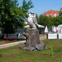 Сова / Owl, Оренбург
