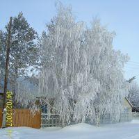 Зима в Первомайском , Пугачёва 28 ., Первомайский