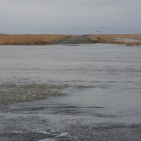озеро Шалкар Кара Ега, Светлый